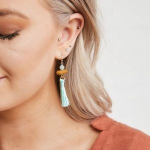 Jewelry - {Cassandra} Tassel Earrings in Mint